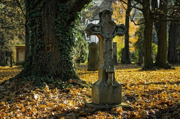 Conoce todo sobre los servicios funerarios, como certificados de últimas voluntades, féretros y tanatorios