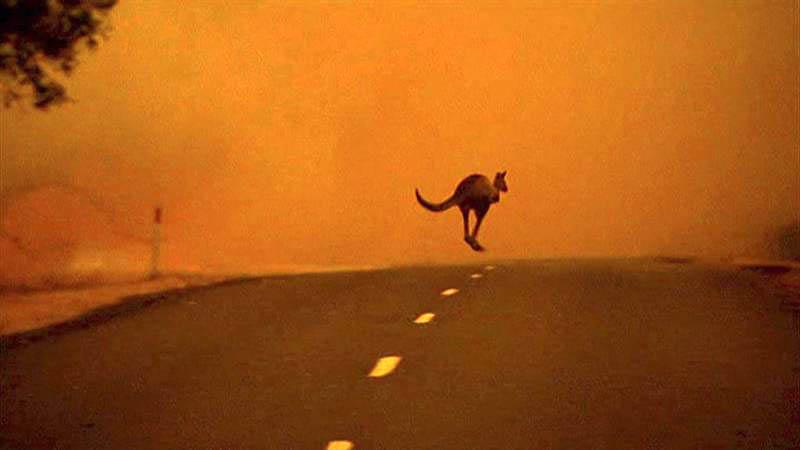 El estado australiano de Victoria extiende el «estado de desastre» por el «peligro extremo» de los incendios