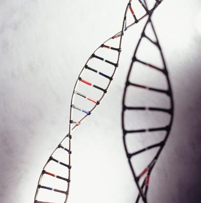 Se confirma la utilidad clínica del Genoma en la prevención de enfermedades en la población general