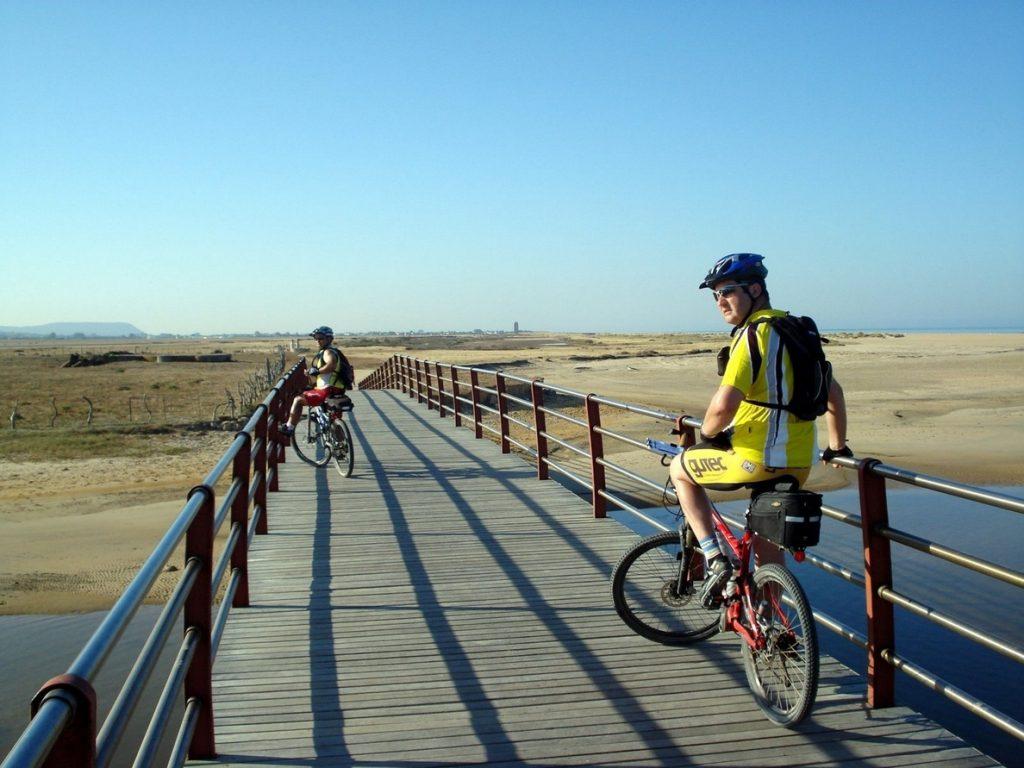 Asociaciones ciclistas y ecologistas demandan apoyo para la bici durante la desescalada