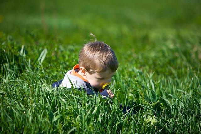 Pérdida de olfato: qué es y cuáles son las causas