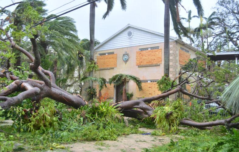 Latinoamérica: más de 2 millones de personas luchan por sobrevivir al huracán Lota